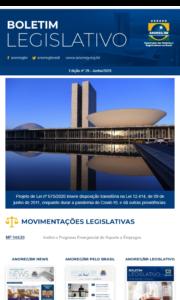 Boletim Legislativo nº 29